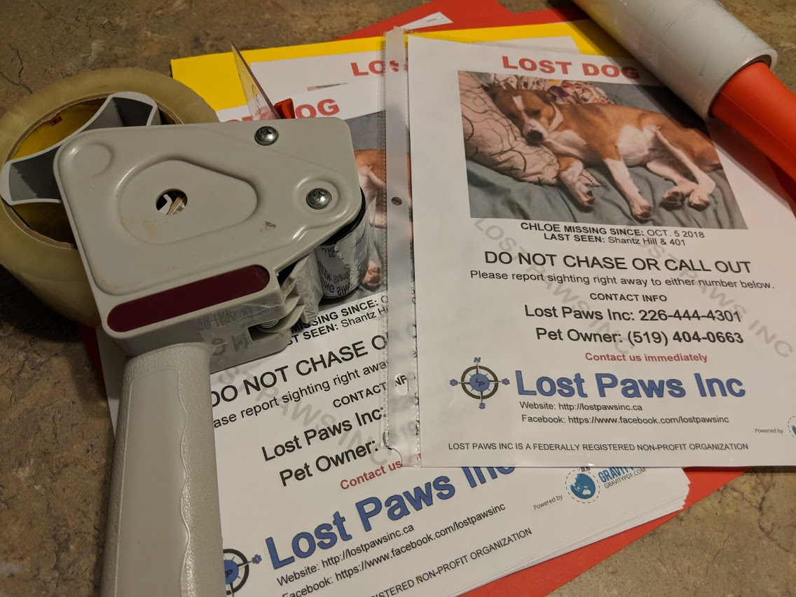 Local non-profit, Lost Paws Inc., helps lost pets find their wayhome